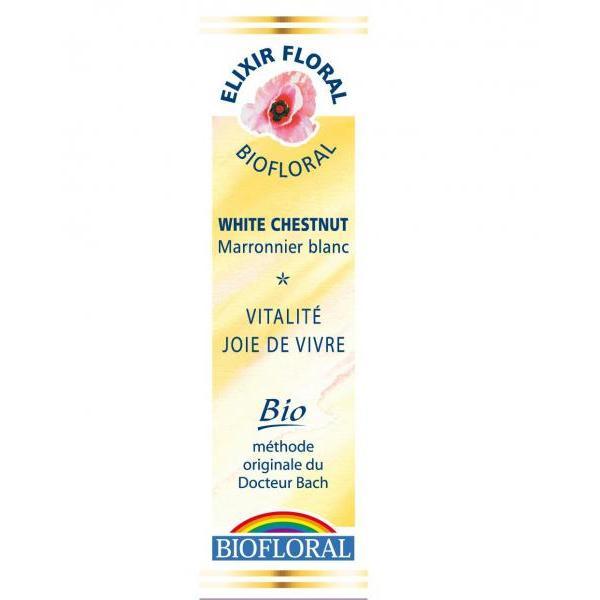 Fleur de Bach n°35 White Chestnut/Marronnier Blanc -Biofloral