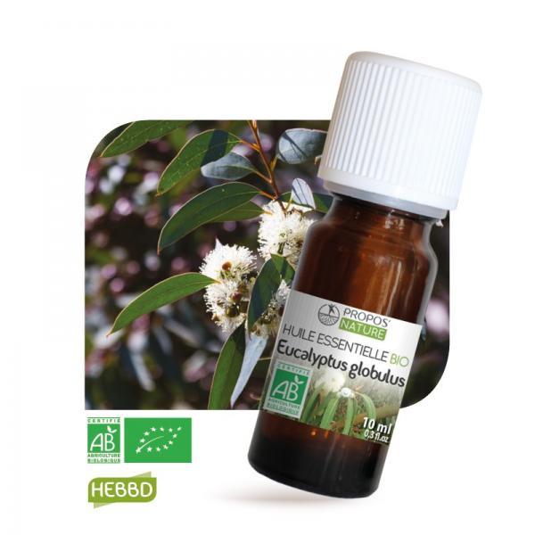 Huile essentielle d'Eucalyptus Globulus Bio 100% pure et naturelle-Propos'Nature