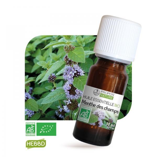 Huile essentielle de Menthe des champs Bio 100% pure et naturelle-Propos'Nature