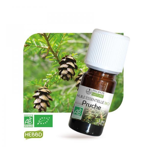 Huile essentielle de Pruche Bio 100% pure et naturelle-Propos'Nature